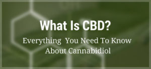 what-is-cbd-oil